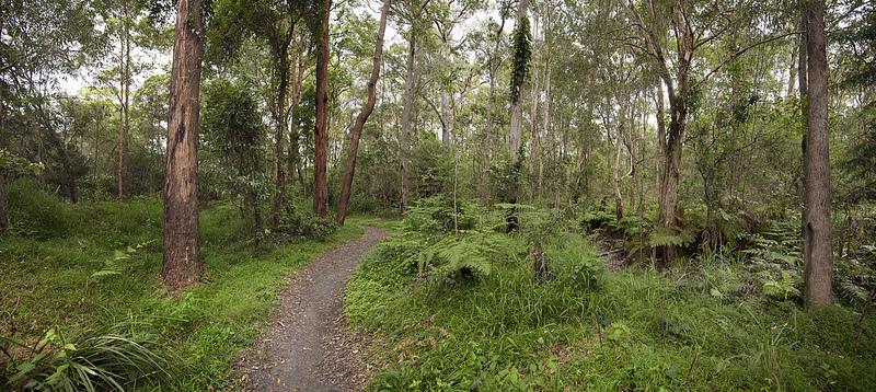 Explore Popular Tracks At Chermside Hills & Milne Hill